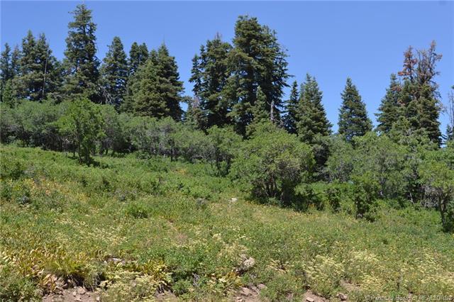 222 Pine Meadow Road Wanship Ut 84017