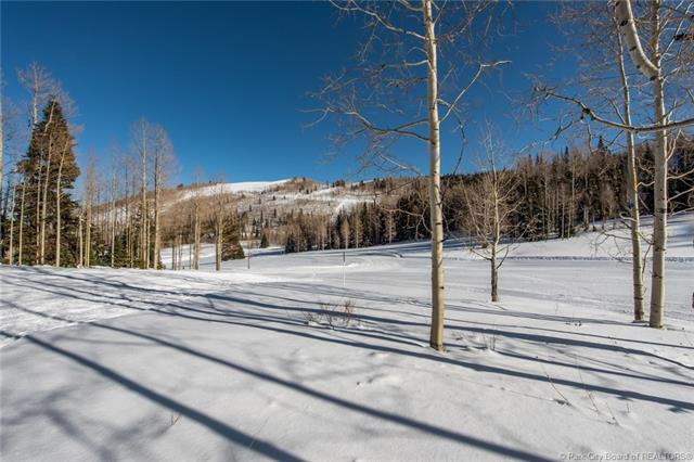 307 White Pine Canyon Rd, Park City, Ut Park City Ut 84060