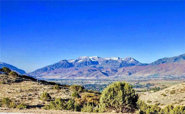 2394 E. La Sal Peak Drive (500), Heber, Ut  84032 Heber City Ut 84032