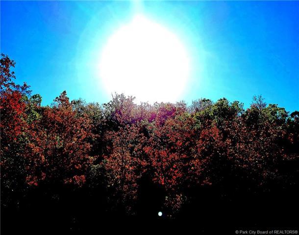 Xyz Oakwood Other City - Utah Ut 84663