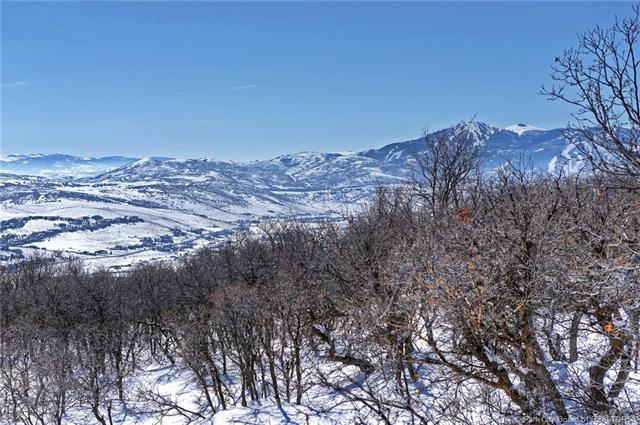 1560 Snow Berry St. Park City, Utah 84098 Park City Ut 84098